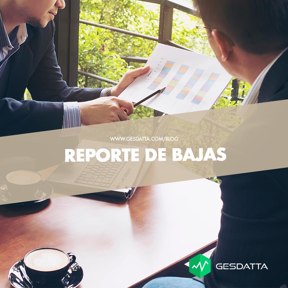Reporte de Bajas